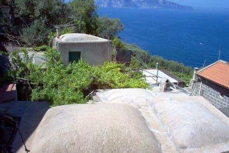 The Wisteria's home with Capri view - Massa Lubrense