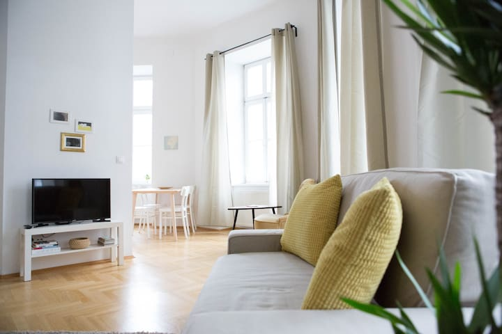 Central Viennese Apartment