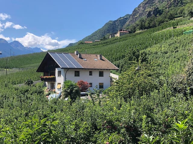 "Cosy apartment ""Ferienwohnung Golden"" on a farm with Wi-Fi & Mountain View; Parking Available"