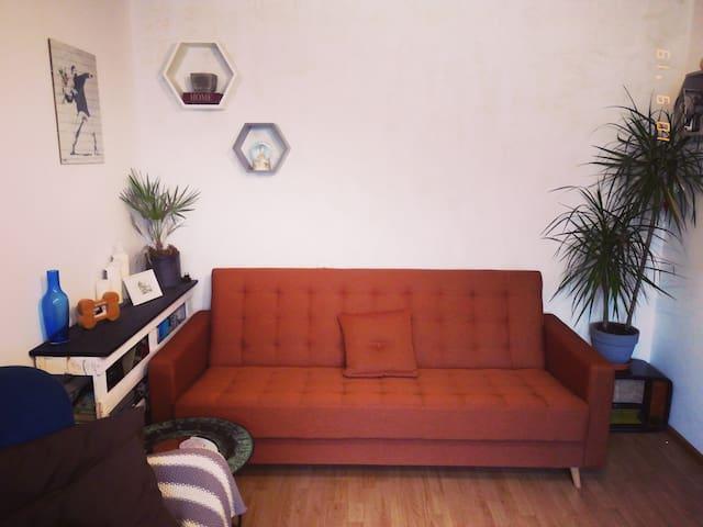 Vilnius Cozy Apartment