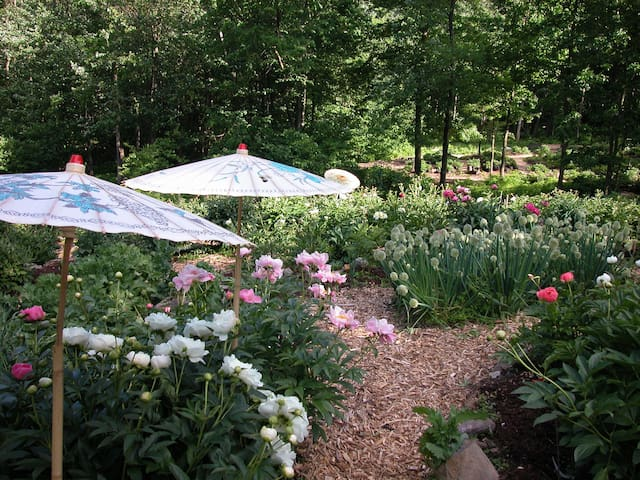 Serene Litchfield County Peony Farm - Thomaston