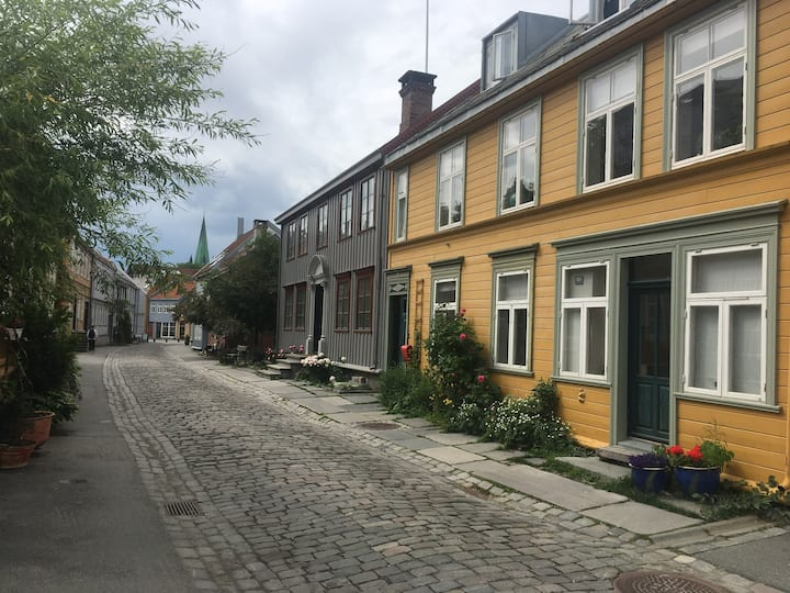 Old town charm in Bakklandet - spacious and calm