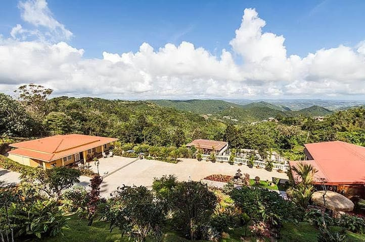 Las Julias Country House - Cayey - Other