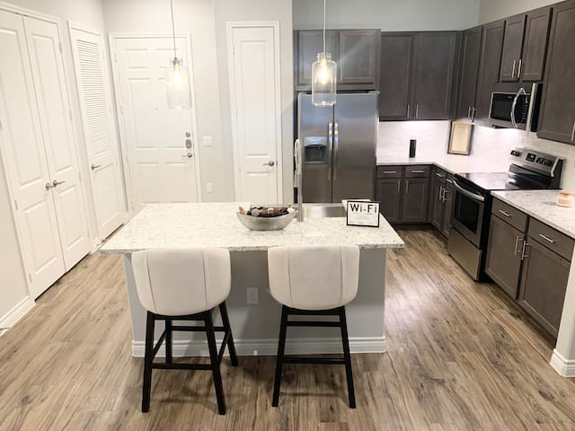 Luxury Apartment 15 mins from IAH