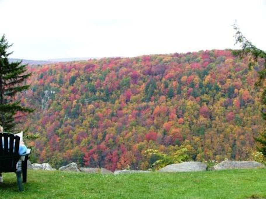 Don't miss the most amazing time of year. Fall