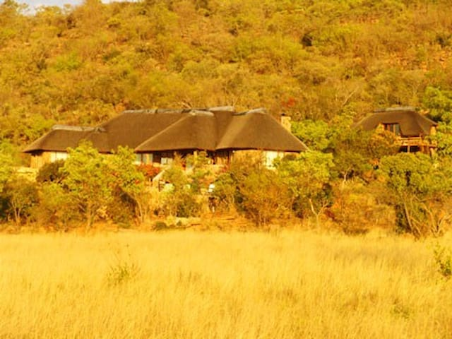 Kololo Game Reserve near Welgevonden, Villa Kings
