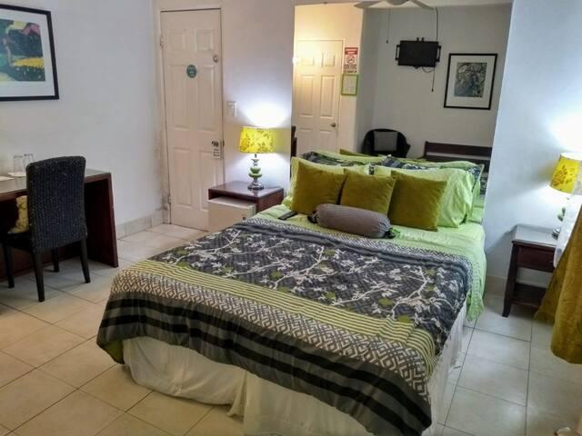 ⭐ San Jose Costa Rica - Queen Private Room ⭐