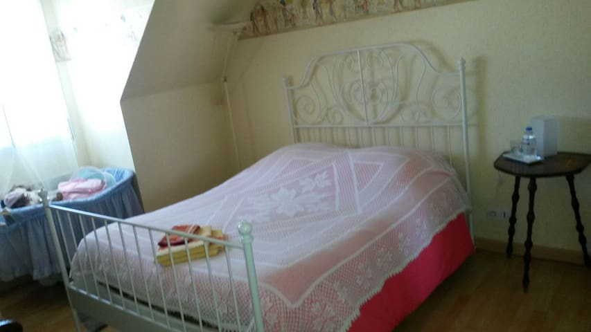 Calm and residencial area - Saint-Jean-de-la-Ruelle - Casa