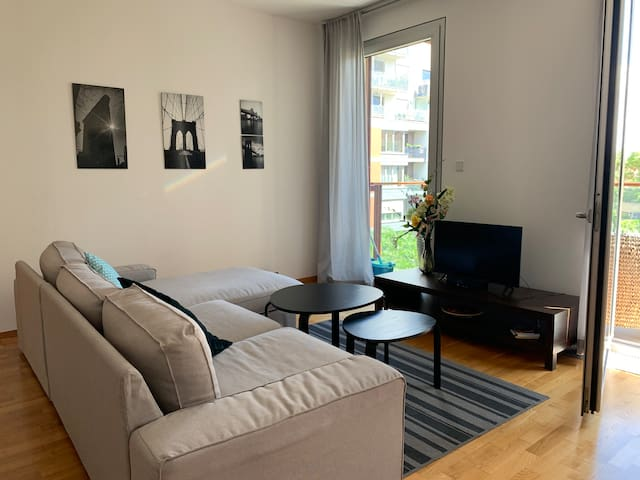 Big sunny APT with FREE garage parking and wi-fi
