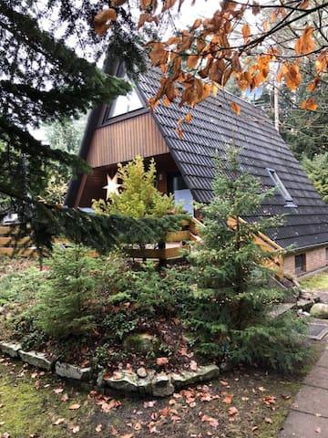 Märchenwaldhaus Drosselbart  mit Waldgrundstück