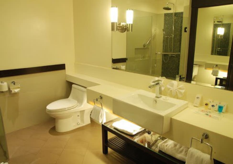 Toilet and Bath. Complete with toiletries and towels.