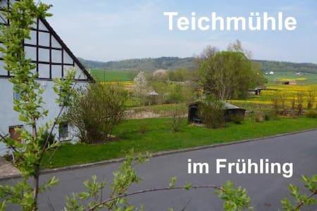 Ferienwohnung Teichmühle 2-6 Pers. - Frankenberg (Eder) - Apartamento