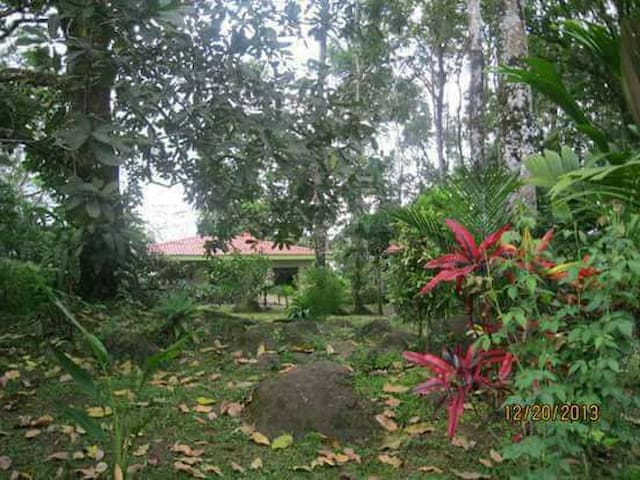Home for rent in costa rica