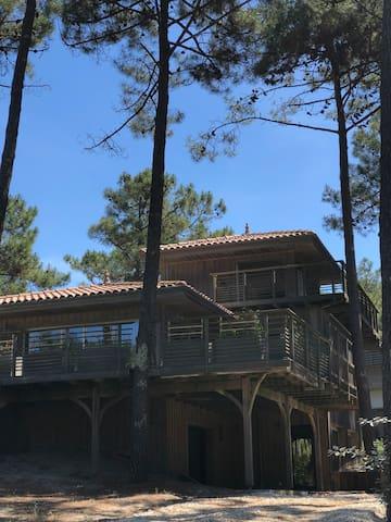 maison en bois grande terrasse panoramique.