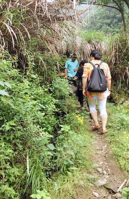 整个小村都被钱塘江的分支源头--括苍山脉覆盖,可以尽情地呼吸有氧空气。