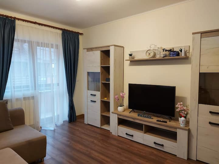 Cozy house in the center of Sinaia welcoming you