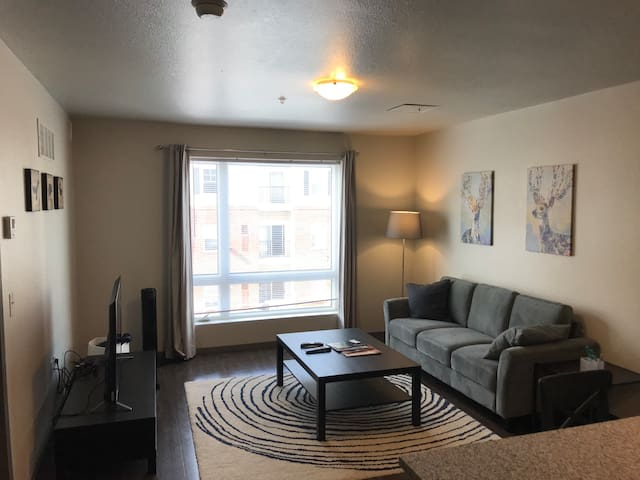 1 Bed Apartment Near University of Minnesota