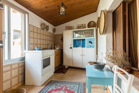 Casa Elvira Cod. IUN P0061