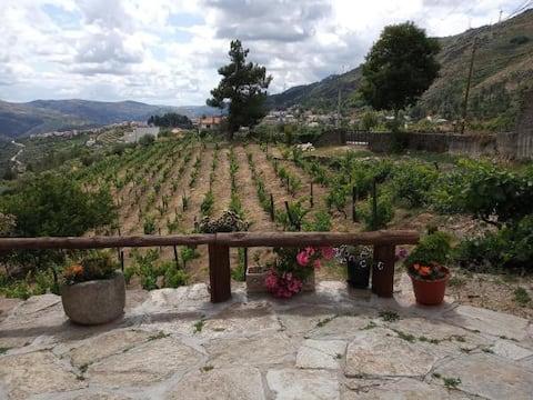 Casa da Vinha em Tabuaço (Douro) - Casa com vista
