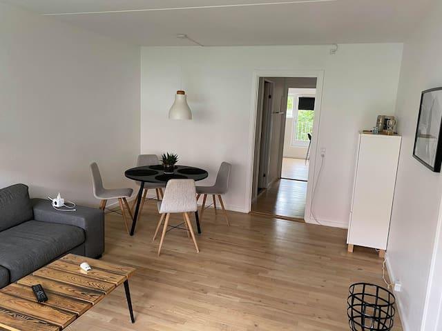 Spacious and Bright Apartment in Copenhagen