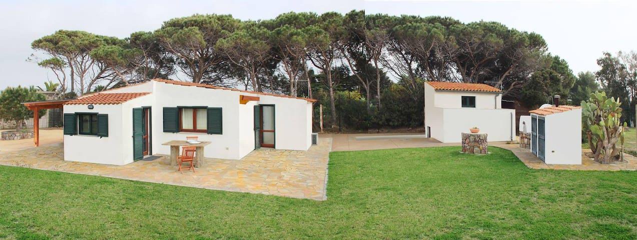 Quiet villa in Sardinia (Italy) - Calasetta - Villa