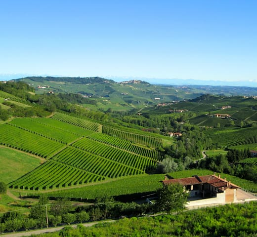 Barolo Vineyard Apartment SanPietro - Monforte d'Alba