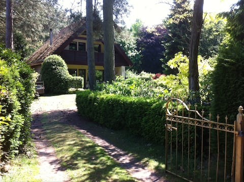 Forest house with a beautiful garden