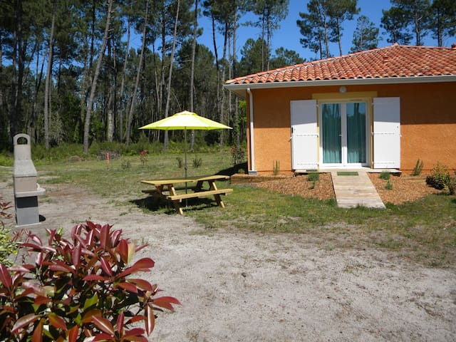 Petit Appartement Charmant 30 m2 - 4 pers.- WIFI/BARBECUE - STE EULALIE EN BORN