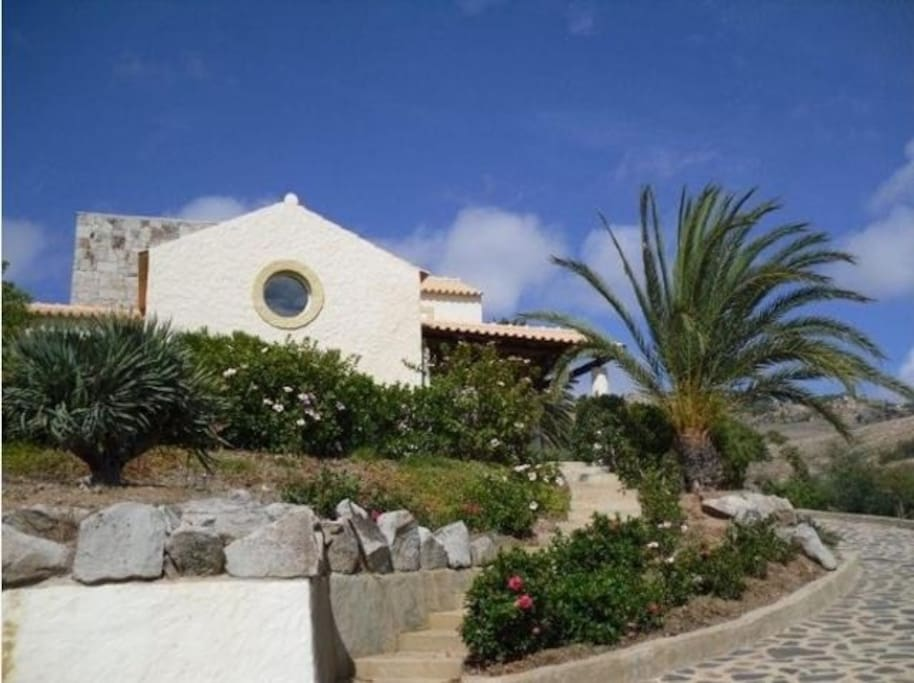 The Villa surrounded by the palm trees, dragon trees...
