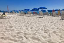 Hotel beach with lounges and Umbrellas. Beautiful white sand