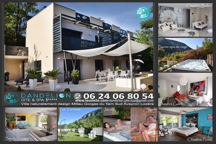 Villa 5* natur design piscine jacuzzi plage Millau
