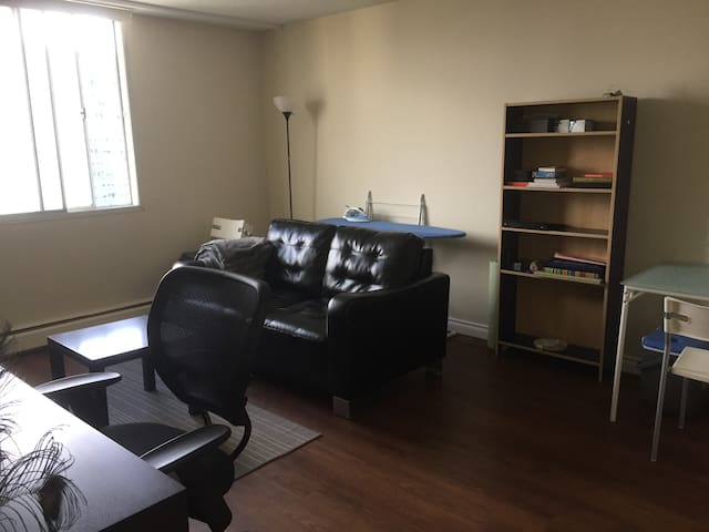 Downtown 1-Bedroom Apartment - Calgary - Apartment