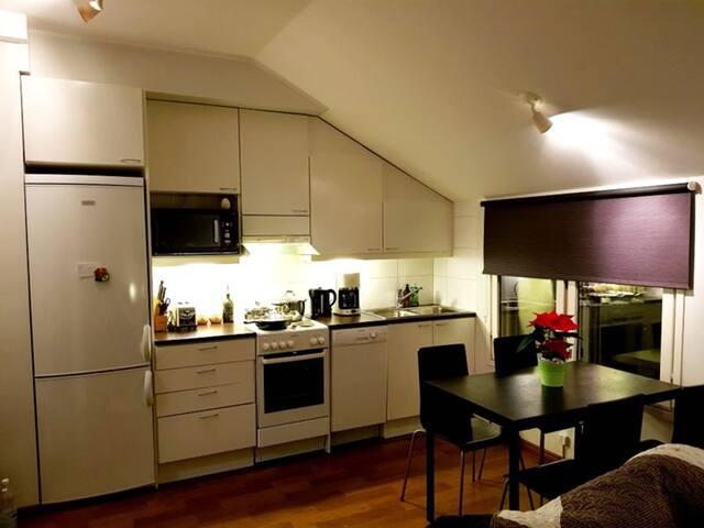 Modern penthouse in the heart of Helsinki