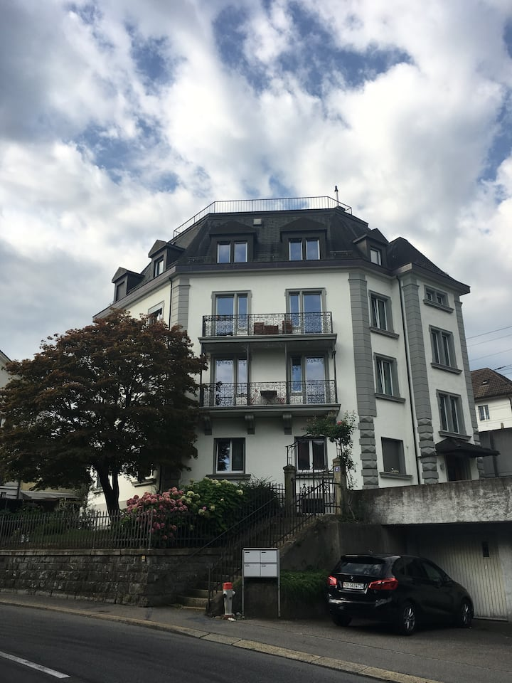 Bright & Spacious Thalwil Apartment with Lakeview