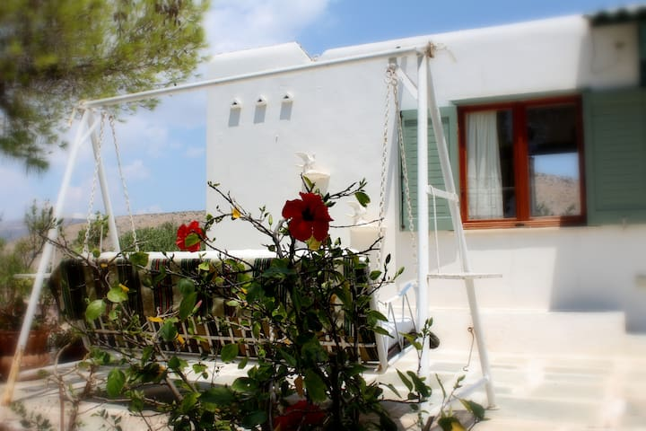 1AA16 Aegean traditional home in Athens - Thimari