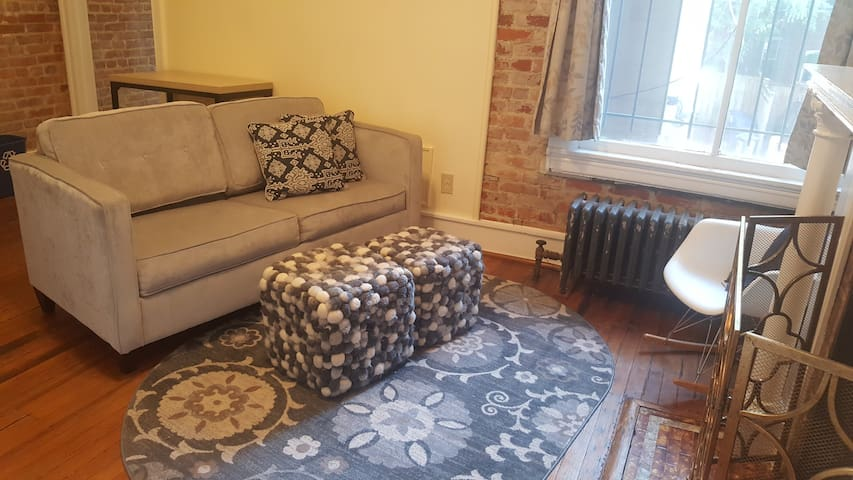 Walk Everywhere! Charming Adams Morgan 1 BR!