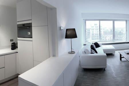Ruim appartement voor 3 personen - Gent