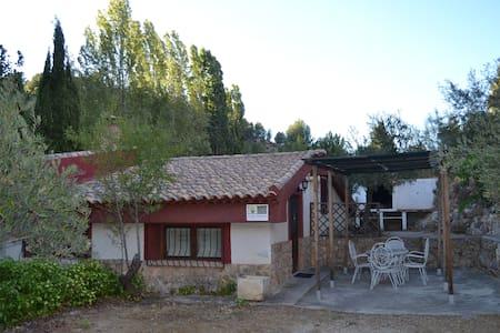 Casa del Olivo, Molinicos - Molinicos
