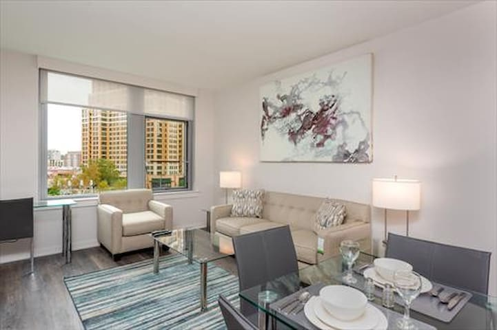 SPACIOUS apt in the heart of Crystal City w/gym