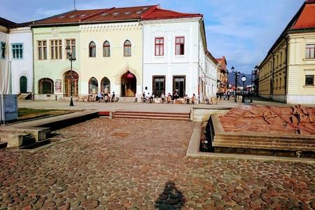 Apartment Old Centre - Baia Mare - Pis