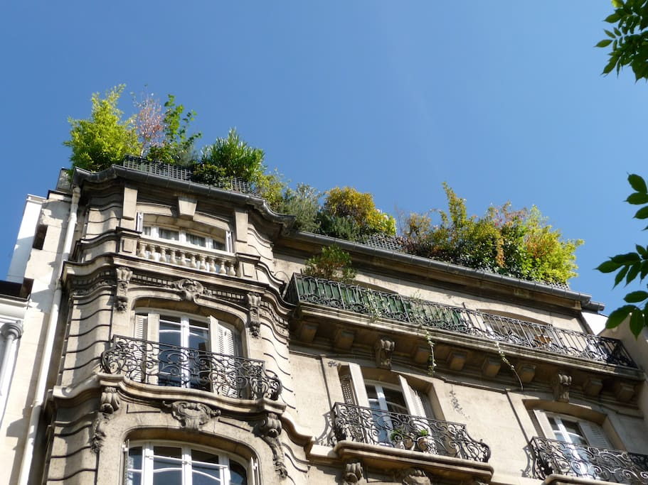 La terrasse vue de la rue