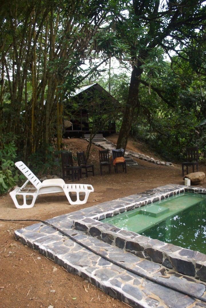 Little pool house