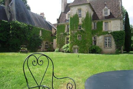 Charming 15th century castle - Lucay le libre - Schloss
