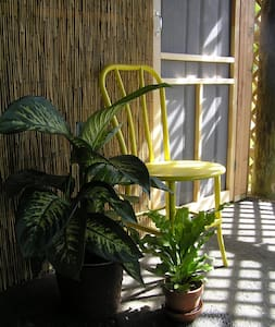 Garden Apartment plus Cabana - Everglades City
