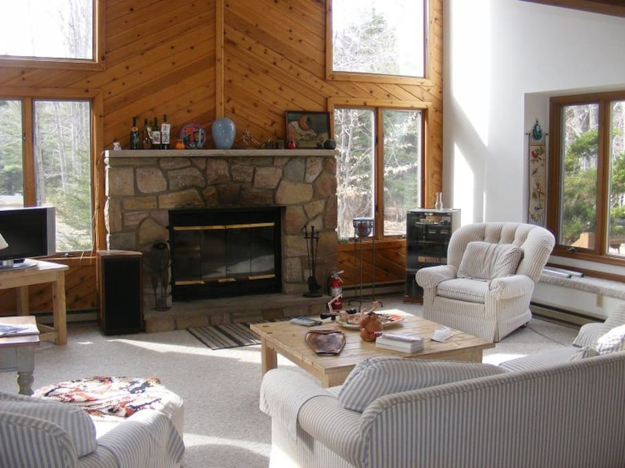 Living room with fireplace.  There is a sofa bed.