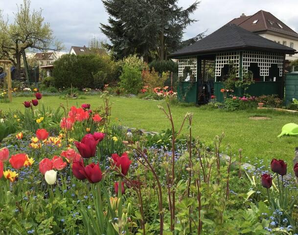 Im Frühling ist der Garten natürlich am schönsten. Friederike hat ein echtes Händchen dafür!