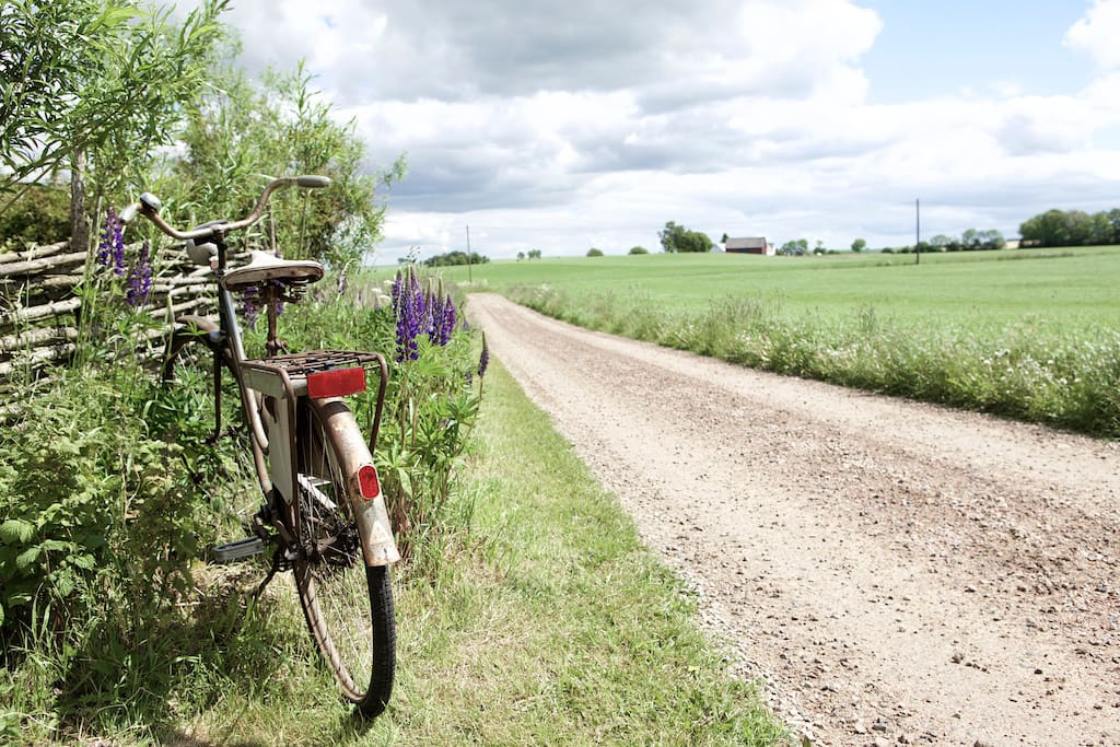 Explore the countryside on your retro bike!