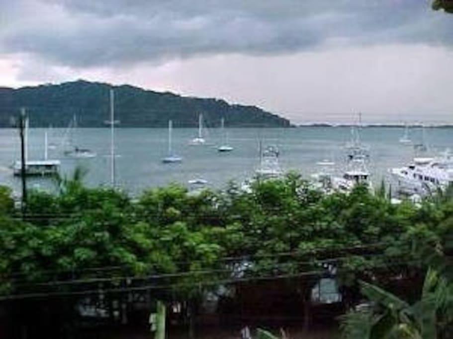 Boat harbor and marinas across the street.