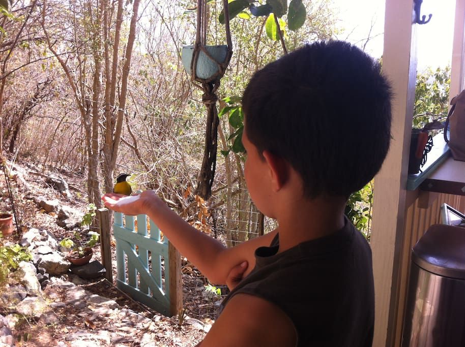 It's so peaceful at the retreat, that birds land in your hand!