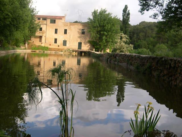 Apartamento amplio con terraza - Vimbodí Poblet - Wohnung